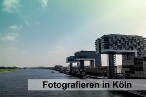 Flussaufwärts stehen die drei L-förmigen Kranhäuser am Kölner Rhein