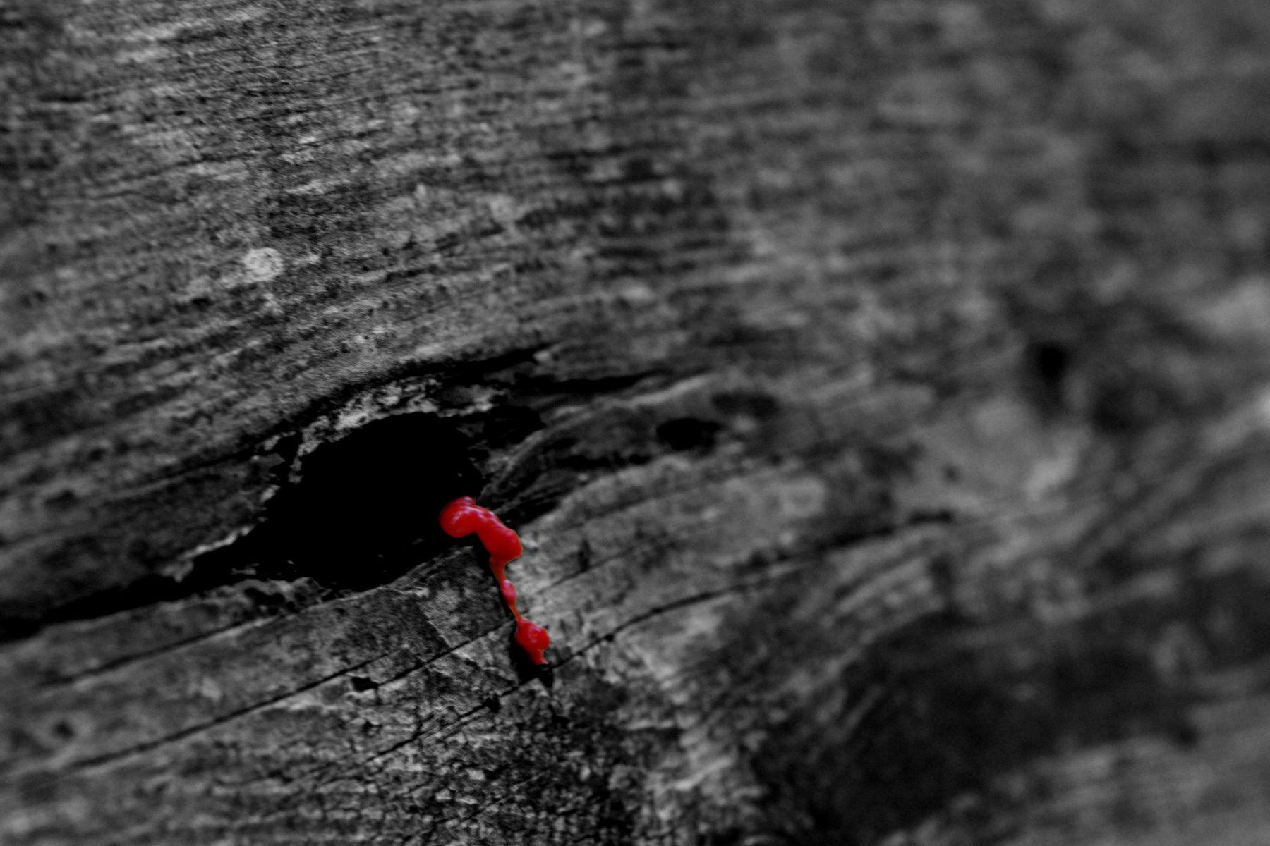 Dieses Loch in der Parkbank sieht auf der schwarz-weiß-Aufnahme mit Colorkey aus, als würde das Holz weinen