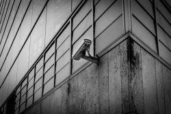 Bilderrätsel im kalten Berlin – wer findet die Auflösung?
