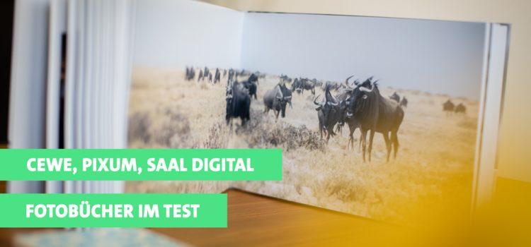 Test: Fotobücher von Cewe, Pixum und Saal Digital im Vergleich