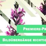 Premiere Pro-Blenden richtig einsetzen