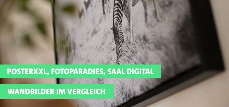 Test: Wandbilder von PosterXXL, Fotoparadies und Saal Digital im Vergleich